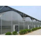 Casa verde de la película agrícola del PVC