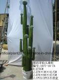 Piante tropicali artificiali dei bonsai per la decorazione dell'interno