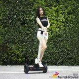 Motorino elettrico della bici del vagabondo del vento dell'equilibrio elettrico di auto
