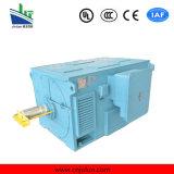 Motor de alta tensão da série de Y, motor de indução de alta tensão Y3556-4-315kw