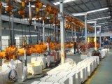 élévateur 500kg à chaînes électrique avec l'embrayage