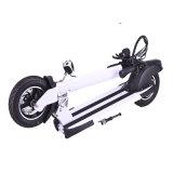 350W Foldable 기동성 2 바퀴 무브러시 모터 전기 스쿠터 (SZE350S-1)