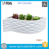 Contenedor de cerámica blanco moderno de la flor del diseño de la dimensión de una variable de hoja