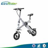 Bici elettrica di E6 Ecorider con il motore della batteria 36V Burshless di Llithium