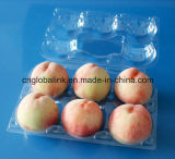 Melocotón/tomate/Apple/bandeja de empaquetado de la exportación del kiwi/de la fruta fresca del higo/de la pera