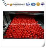 販売のための赤0.68の口径Paintball/Paintball