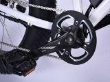 Freno eléctrico del disco de la bicicleta 48V 500W de la montaña