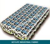 البوليستر تشكيل طبقة Fabric- SSB الثلاثي تشكيل