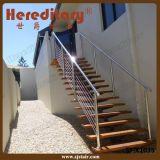 Barandilla exterior del acero inoxidable para la escalera (SJ-X1036)
