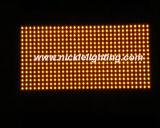 Módulo rojo de interior y al aire libre de P10 del monocromo de LED de la visualización
