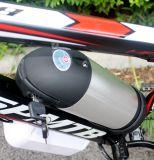 250W 뚱뚱한 타이어 산 전기 자전거/산 전기 자전거/바닷가 함 뚱뚱한 E 자전거