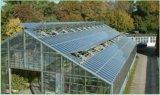 찬 굴곡 광전지 농업 온실