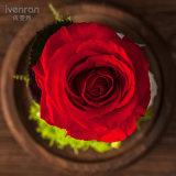 Gift van het Festival van de Bloem van Ivenran de Verse