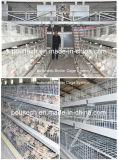 金網および良質及び価格(タイプ)が付いている肉鶏のケージ