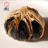 負けた重量のAnti-Aging発酵させた有機性高い純度の黒のニンニク800g