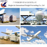 Het Luchtvervoer van de Vrachtvervoerder van de Lucht van China Van China aan Overzee