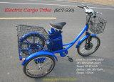 3개의 바퀴에 의하여 자동화되는 자전거, 전기 화물 Trike 의 3 우리의 허브 모터를 가진 전기 화물 세발자전거에 있는 사인 파동 관제사