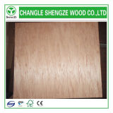 Decoration를 위한 BB/CC Dynea Bintangor Fancy Veneer Plywood