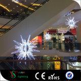 2017 Lichten van het Motief van de Ster van de Decoratie van de Nieuwe LEIDENE Straat van Kerstmis de Openlucht 3D