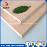 ホーム家具の木のシーツのための特大メラミンまたはOkoumeのポプラの合板