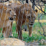 Загородка приложения леопарда веревочки провода нержавеющей стали