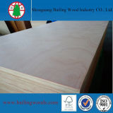 중국 Cheap Price Commercial Okoume Plywood (2-30mm)