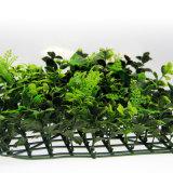 Cerca artificial de la hierba del seto falso del boj