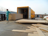 1220X2440 Size MDF Board voor Iran Market