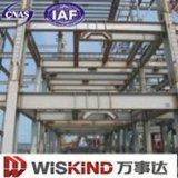 Конкурсное хорошее здание большой пяди конструкции (WSDSS311)
