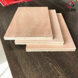 madeira compensada de 5 ' x8