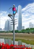 300W de Turbine van de wind en het Systeem van de Verlichting van het Zonnepaneel op de Weg