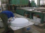 PTFE/Teflon/strato di plastica modellato modanatura di PP/PE/PVC