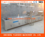 Machine de blanchiment végétale, matériel de blanchiment Tstd-80 de fruits et légumes