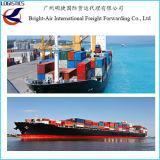 Quanto é navio do contentor do mar/carga da maioria de China a Romania Constanta