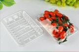 Placa plástica de China Factory sem a tampa para a fruta (bandeja de PET)