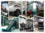 Dzl6 6ton 4200kw Kohle abgefeuerter Warmwasserspeicher oder Dampfkessel