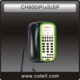 رشف هاتف ([ش800يب] ([إكسس]) [سب])