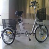 3 바퀴 250W 전기 세발자전거 Rseb-704