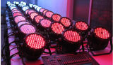 Fachmann 54*3W RGBW LED NENNWERT Stadiums-Disco-Beleuchtung (HL-034)