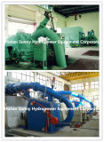 Pelton Hydro (Water) Turbine Generator High Voltage 6.3~10.5kv/Hydropower/Hydroturbine