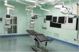二重アームを搭載する医学のペンダント