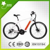 спрятанный 700cc Bike Moutain батареи электрический (RSEB-304)