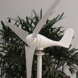 500W 24VDC trinkbarer Wind-Generator + hybrider Ladung-Controller mit der zusätzlichen Solarkapazität 200W