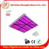 熱い昇進! 1500W 2000W LEDは安いLEDが高い発電LEDがライトを育てる温室のために軽く育てる完全なスペクトルの軽いパネルを育てる