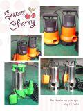 (SDL400D-1) Bomba sumergible centrífuga eléctrica plástica de las aguas residuales con el interruptor de flotador