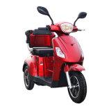 بالغ 3 عجلة يعاق درّاجة ثلاثية كهربائيّة لأنّ هند