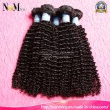 인도 Virgin 머리 깊은 파 온라인 자연적인 색깔 자연적인 사람의 모발