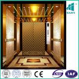 Acier inoxydable de miroir et l'ascenseur handicapé