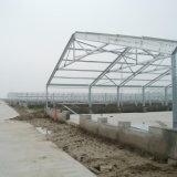 Huis van de Landbouw van het Gevogelte van de Structuur van het Staal van Prebab het Automatische