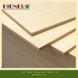 Barato 18mm Poplar Commercial Plywood